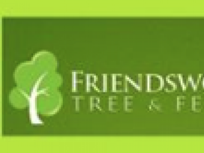Friendswood Tree & Fence